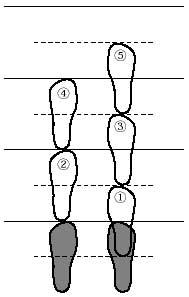 ¿Cómo practicar zazen?-17